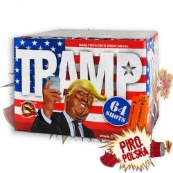 CLE4126 Trump