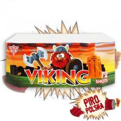 CLE4102 Viking
