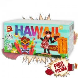 CLE4041 Hawaii