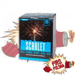 AC25-10-7 Scarlet