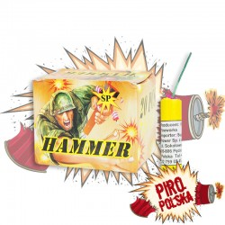 EP1222 Hammer